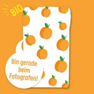 Gefriergetrocknete Früchte ohne Zusätze Aprikose natürlich