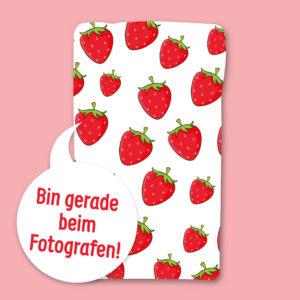 Gefriergetrocknete Früchte ohne Zusätze Erdbeere Pulver natürlich