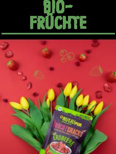BIO Frucht Erdbeere gefriergetrocknete Früchte ohne Zusätze