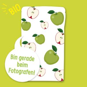 Gefriergetrocknete Früchte Apfel ohne Zusätze BIO natürlich vegan