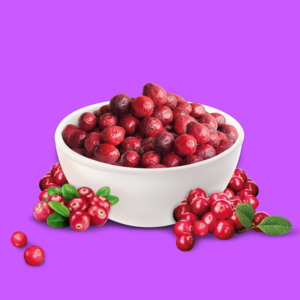 NutriPur gefriergetrocknet Cranberrys Früchte
